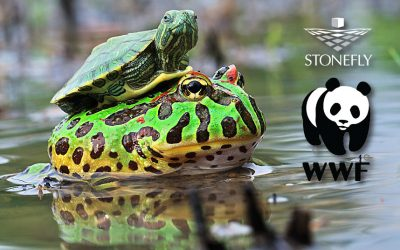 DR365V Backup and Disaster Recovery Appliance Protects WWF-Canada's Data